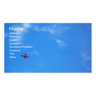 Little Red Airplane Double-Sided Standard Business Cards (Pack Of 100)