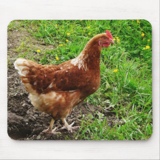 Little Red Chicken  - Free Range Egg Layer Mouse Pad
