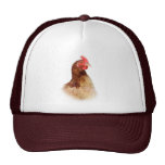 Little Red Hen Hat
