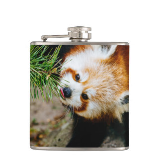 Little Red Panda With Fern - Animal Photography Flask