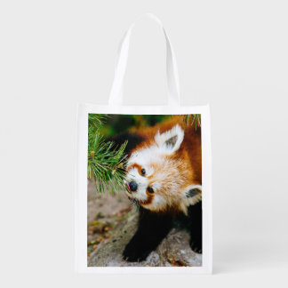 Little Red Panda With Fern - Animal Photography Grocery Bags