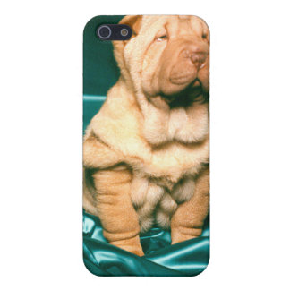 Little Red Shar-pei iPhone 5/5S Cover