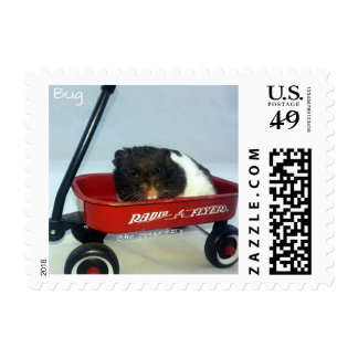 Little Red Wagon Postage