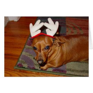 Little Reindeer  Card