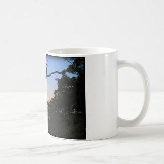 Little River Sunset Coffee Mug