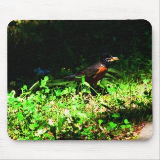 Little Robin Mousepad