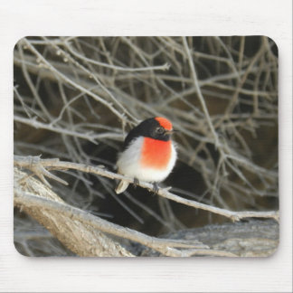 little robin redbreast bird sitting on a twig mouse pad