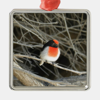 little robin redbreast bird sitting on a twig square metal christmas ornament