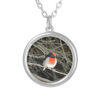 little robin redbreast bird sitting on a twig silver plated necklace