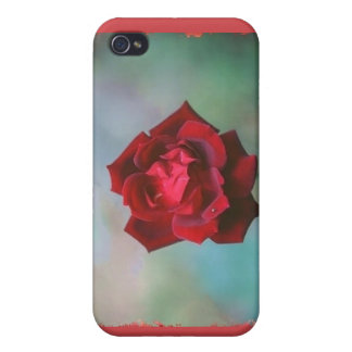 Little  Rose Cases For iPhone 4