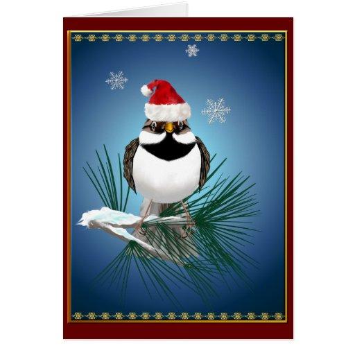 Little Santa Sparrow Card