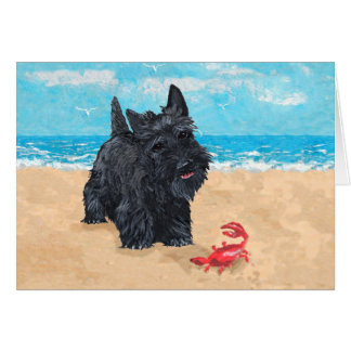 Little Scottie Finds a Crab at the Beach Greeting Card