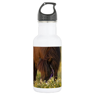 Little Sharni Shetland Pony 18oz Water Bottle