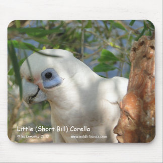 Little (Short Bill) Corella Mouse Pad