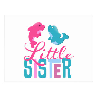 Little Sister Dolphins Postcard