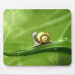 little snail mousepad
