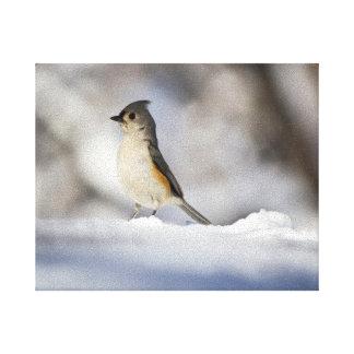 Little Snow Bird Canvas Print