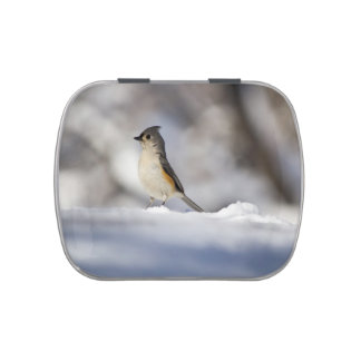 Little Snow Bird Jelly Belly Candy Tin