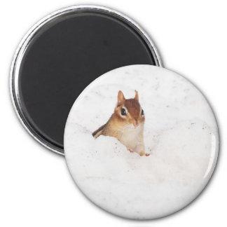 Little Snowbound Chipmunk 2 Inch Round Magnet
