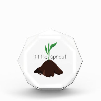 Little Sprout Award