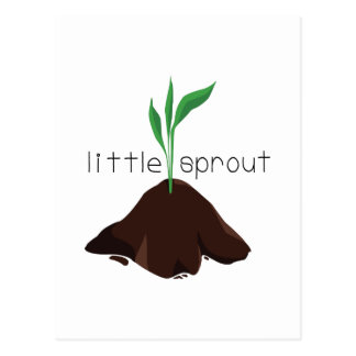 Little Sprout Postcard