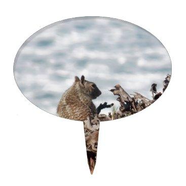 Beach Themed Little squirrel cake topper
