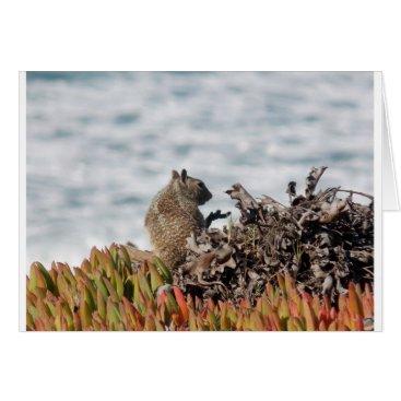 Beach Themed Little squirrel card