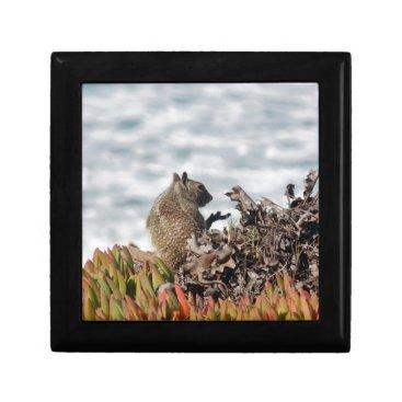 Beach Themed Little squirrel gift box