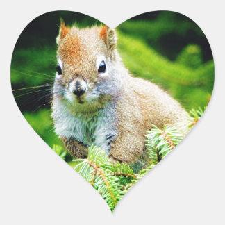 Little Squirrel Heart Sticker