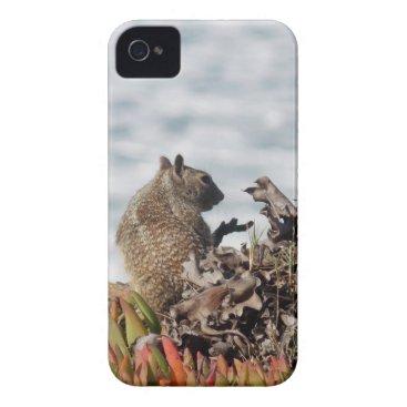 Beach Themed Little squirrel iPhone 4 Case-Mate case