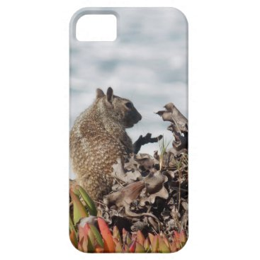 Beach Themed Little squirrel iPhone SE/5/5s case