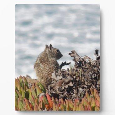 Beach Themed Little squirrel plaque