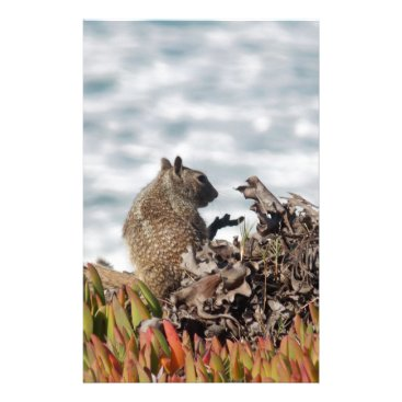 Beach Themed Little squirrel stationery