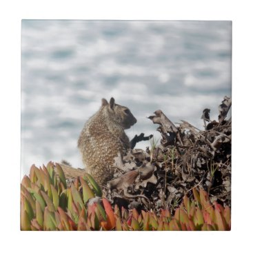 Beach Themed Little squirrel tile