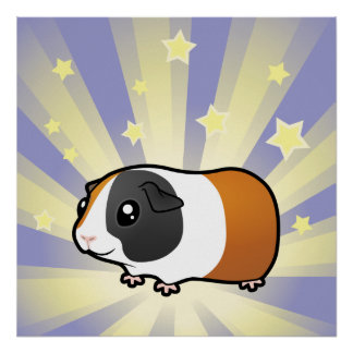 Little Star Guinea Pig (smooth hair) Poster