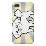 Little Star Maltese (puppy cut) Cover For iPhone 4