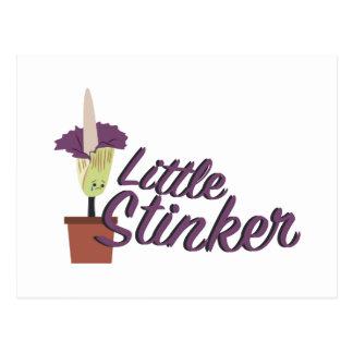 Little Stinker Postcard