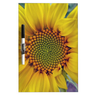 Little Sunflower Dry Erase Board