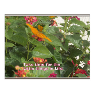 Little things in life Postcard