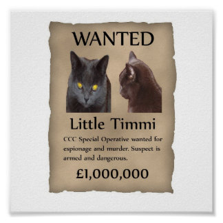Little Timmi wanted poster