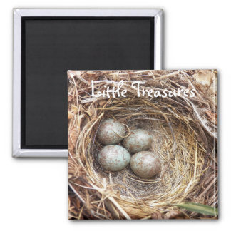 Little Treasures Bird Nest Eggs Photo Magnet