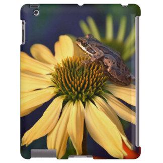 Little tree frog sitting on a flower