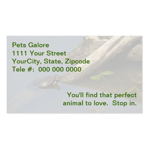 Little Turtle On A Log Double-Sided Standard Business Cards (Pack Of 100)