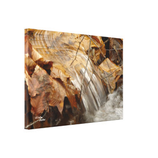 Little waterfall Stretched Canvas Print