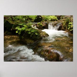 Little Waterfalls Posters