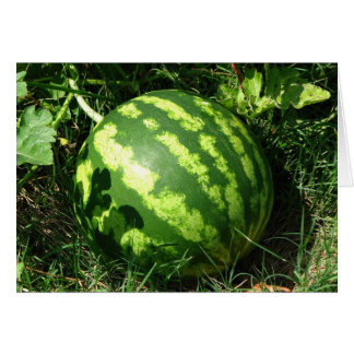 Little Watermelon Greeting Card