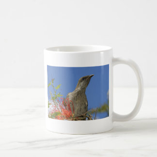 Little Wattlebird Coffee Mug