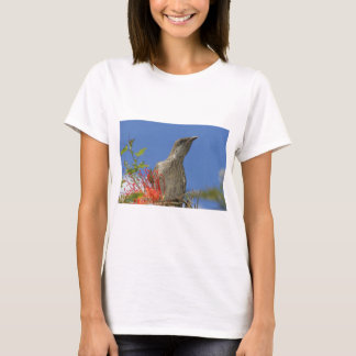 Little Wattlebird T-Shirt