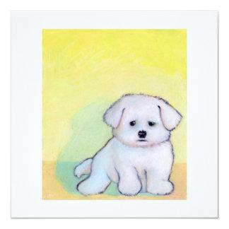 Little white dog art drawing cute Maltese puppy Card