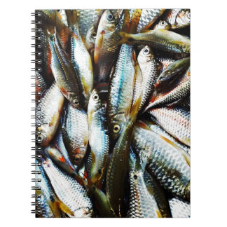 Little White Fish Notebook